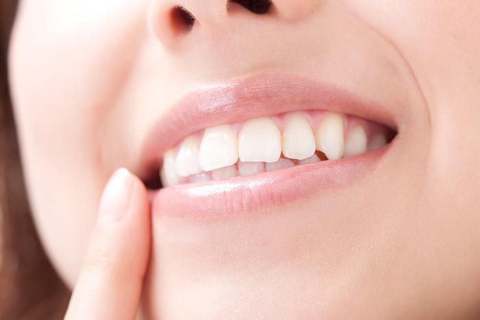 歯並びの良い歯